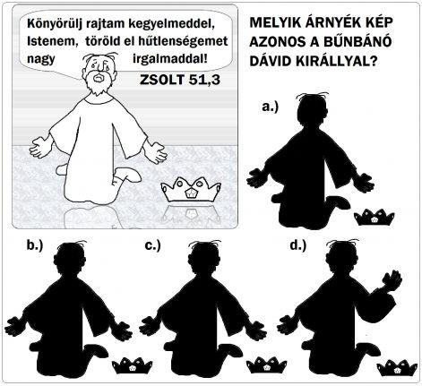 zsolt_513_arnyek_davidkir.jpg